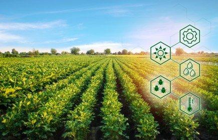 В России появится агроэкосистема для цифровизации хозяйств